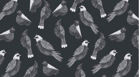 Shadowbox -  Sleeping Sparrow - Slate