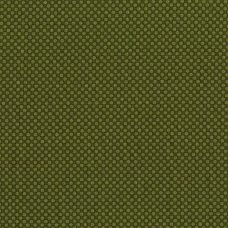 Dots & Stripes - Dot Com - Dark Olive