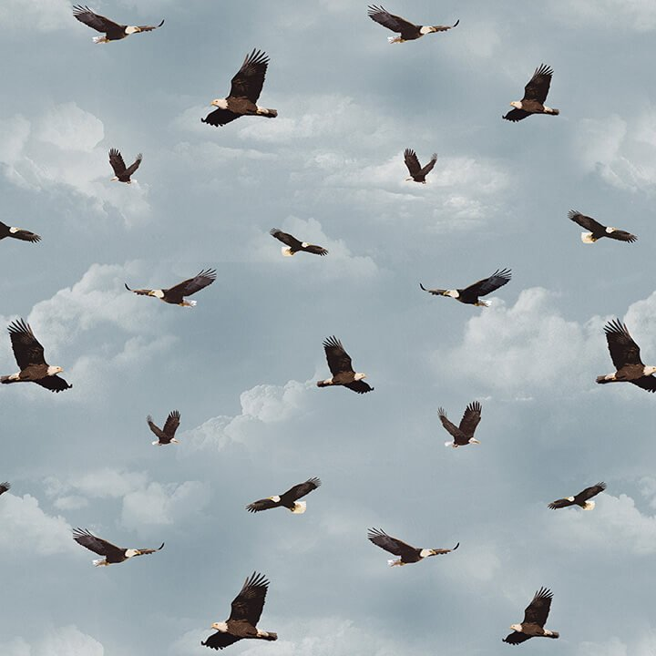 Yellowstone Flying Eagles Blue