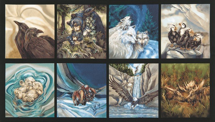 North American Wildlife 4 - Jody Bergsma