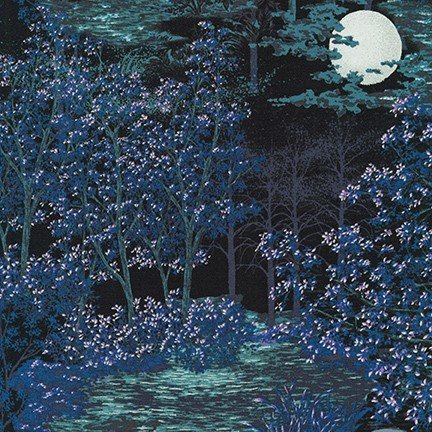 In The Moonlight Forest Evening