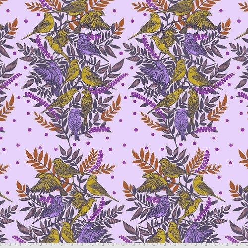 Bright Eyes Visitation Lilac