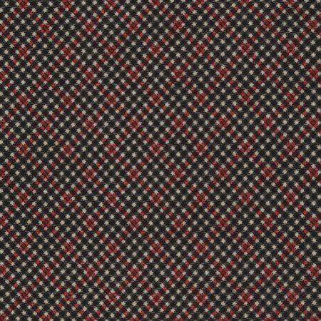Bias Shepherd's Check Flannel Red