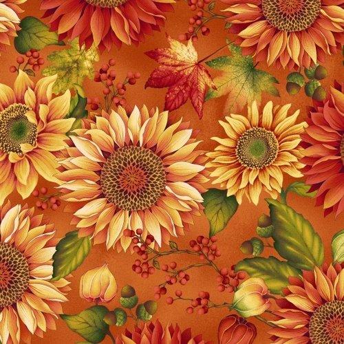 Autumn Album Pumpkin Sunflower