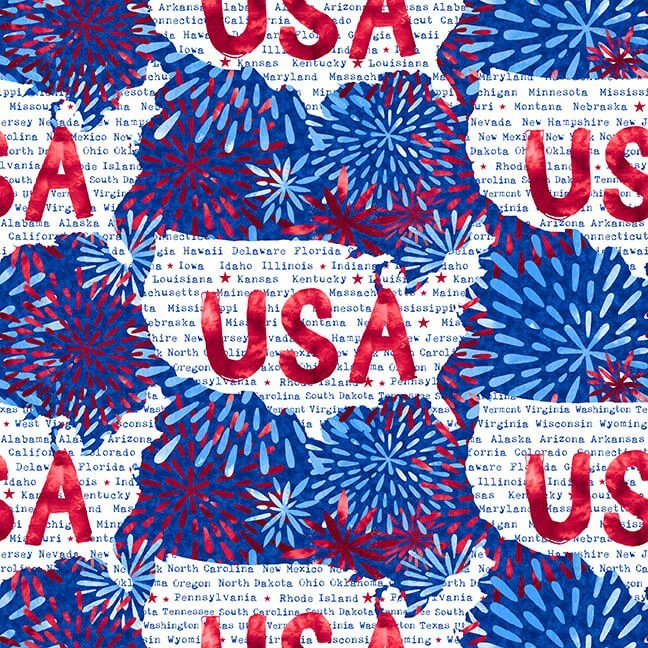 One Land One Flag USA with Fireworks 1483-75