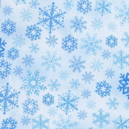North Pole  C6073-ICE