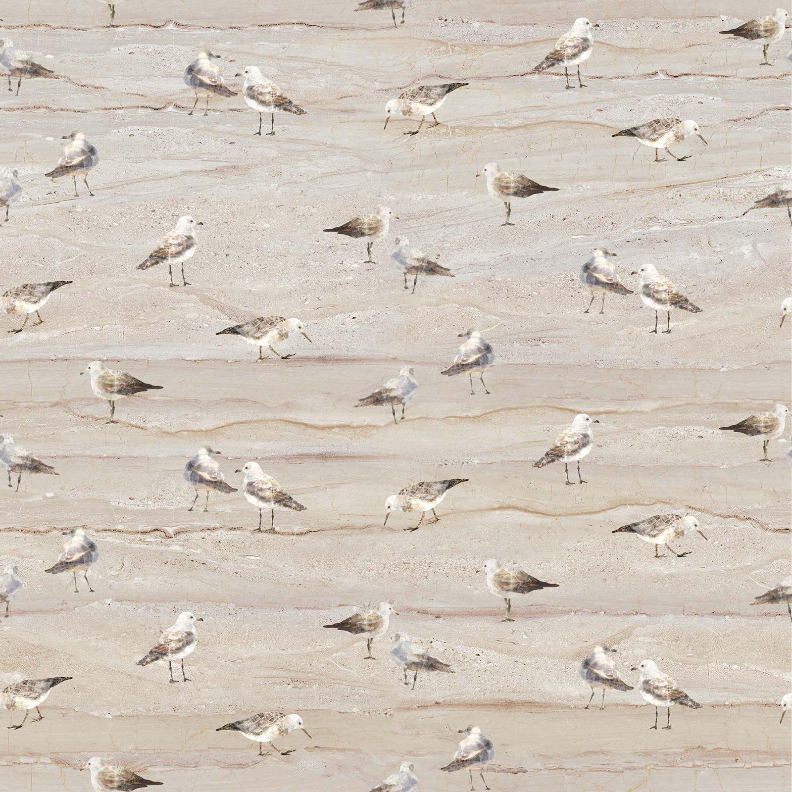 SWEPT AWAY Neutral Gulls on Sand DP23363-12