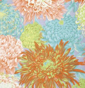 Japanese Chrysanthemum- Spring