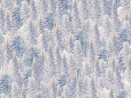 Silent Night Pine Trees Frost