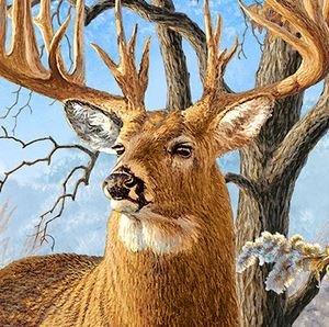 Deer Panel Multi