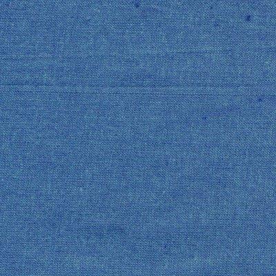 41 Blue Jay