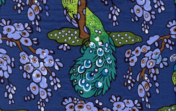 Peacock in Navy