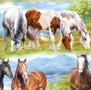 Horse Scene Multi