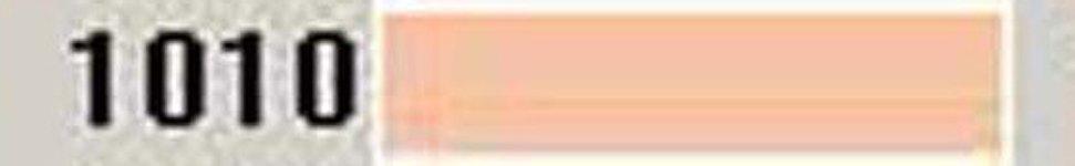 AF-1010-CINNAMON VY LT