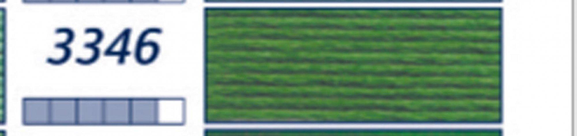 DP3-3346-HUNTER GREEN