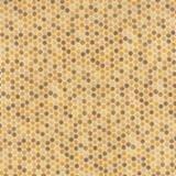 Bee Inspired Tonal 19798