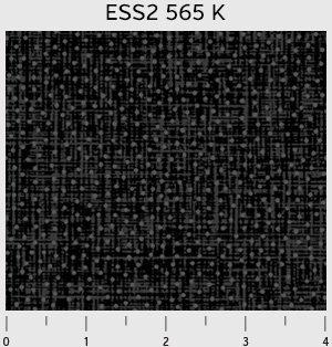 Bear Essentials 2  Grey Dots 00565-K