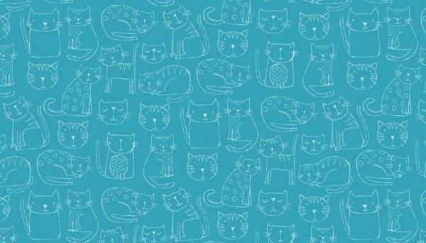 Kitty - AQUA