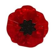 Poppy Brooches 03