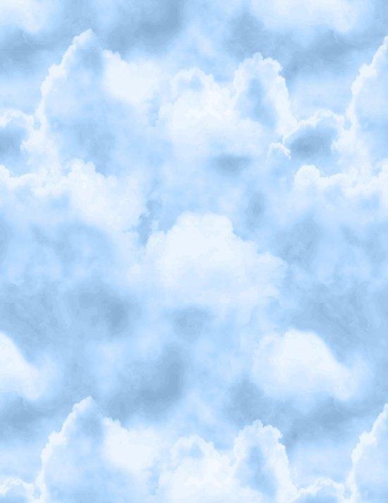 PRAIRIE GATE SKY W/ CLOUDS BY BLANK