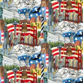 Blank Quilting  - USA All the Way 7403 77