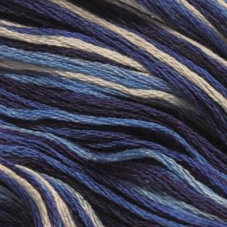 Floss Varigated 9725