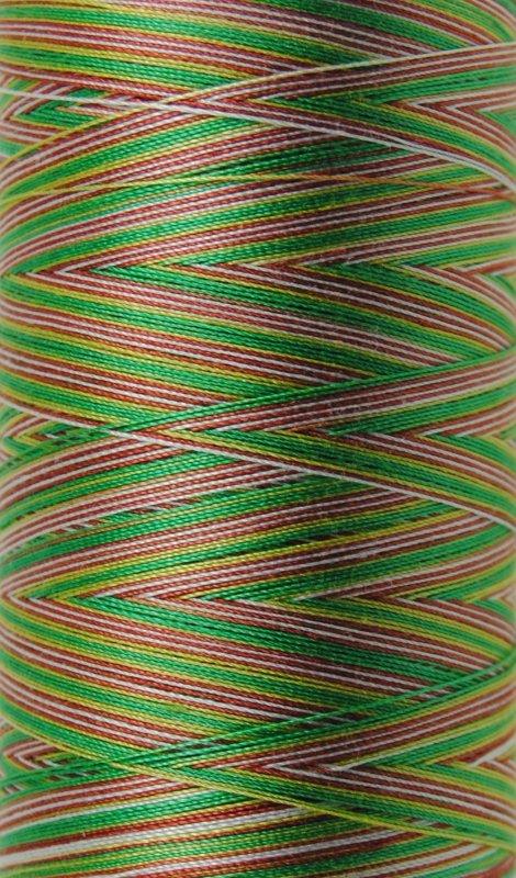 Aurifil 28 wt. Quilting Thread-Leaves Variegated-4650