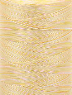 Aurifil 28 wt. Quilting Thread-Gold/Yellow Varigated-3910