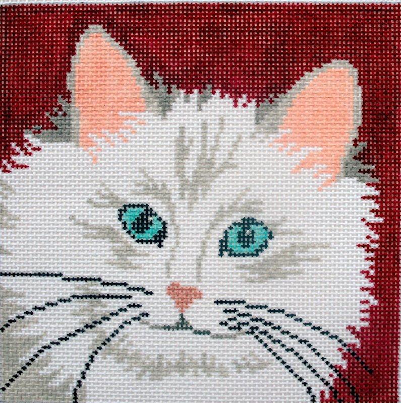Fluffy Cat