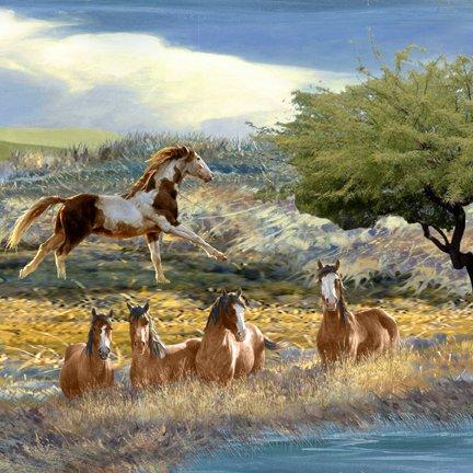 Mustang Meadows