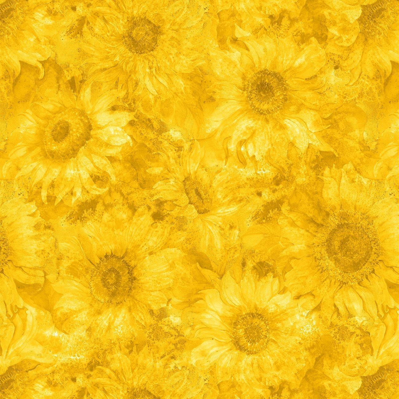 Slice of Sunshine