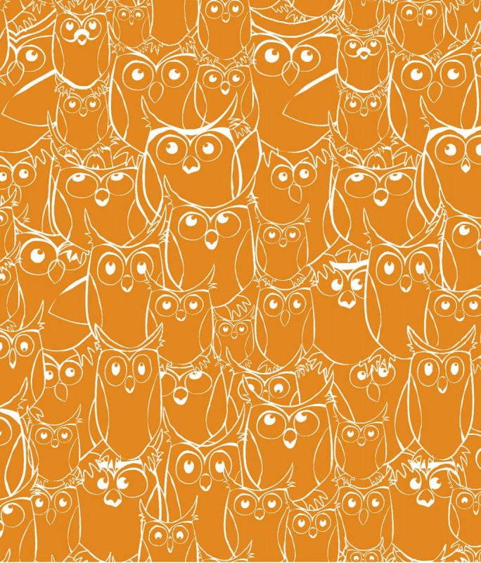 120-7081 orange/white owl outline