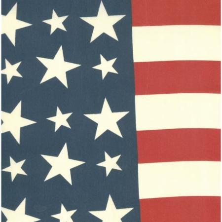 19 Bar Harbor Flag Bunting ROT