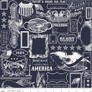 Lost and Found America Americana Main Navy