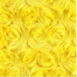 Rosebud Bella Snuggle Solid on Minky Yellow