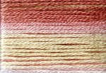 Cosmo Variegated Six Strand Embroidery Floss -8007