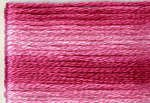 Cosmo Variegated Six Strand Embroidery Floss -8008