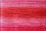 Cosmo Variegated Six Strand Embroidery Floss -8010
