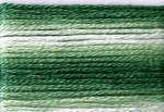 Cosmo Variegated Six Strand Embroidery Floss -8023