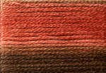 Cosmo Variegated Six Strand Embroidery Floss -8044
