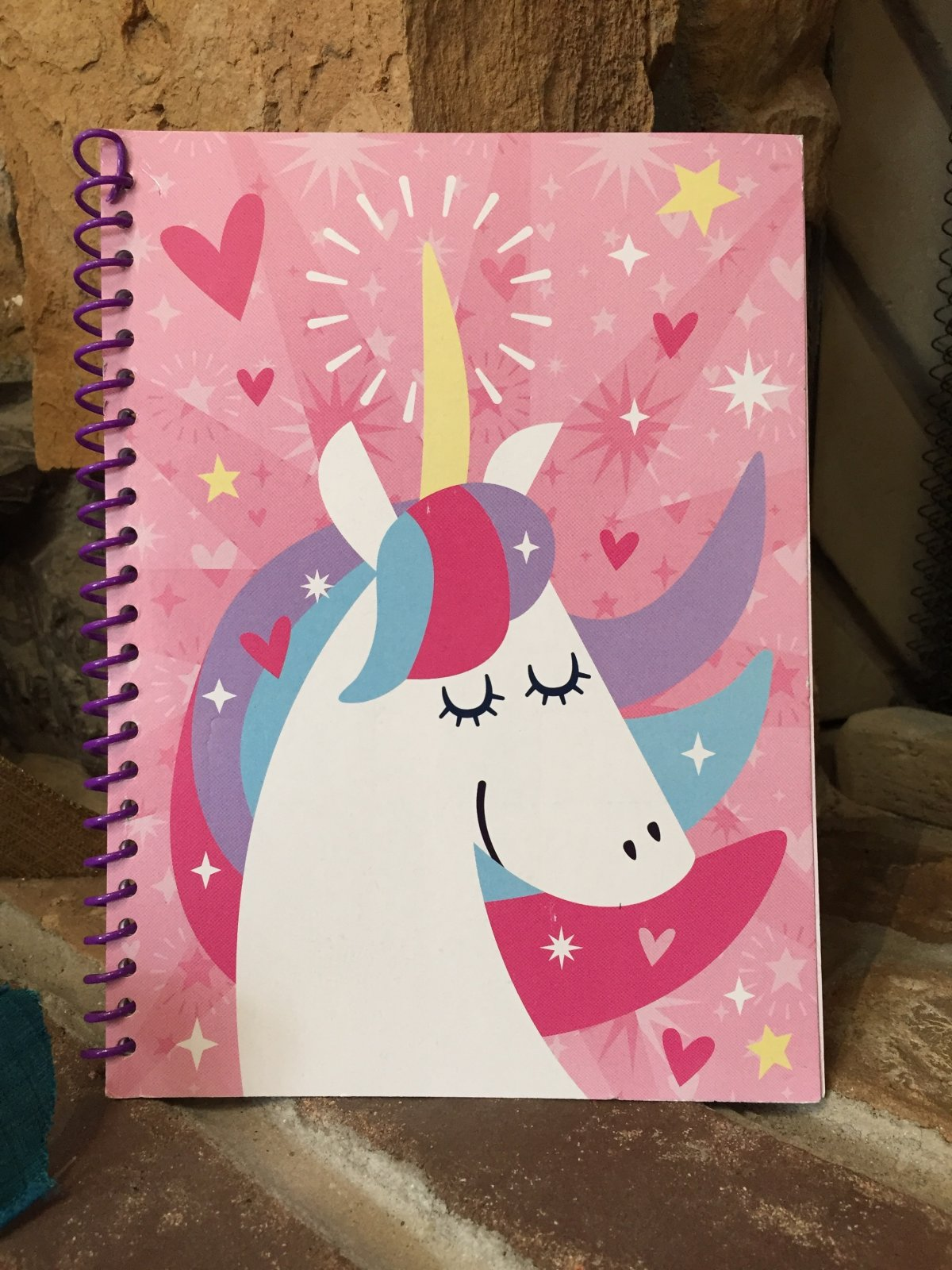 Darice Unicorn Journal