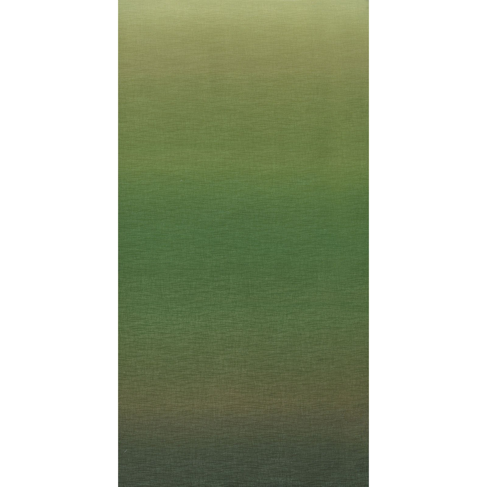 Ombre Green