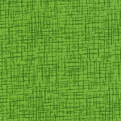 108 Wide Betula Lime