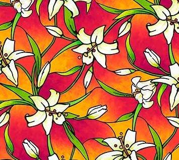 Rejoice Orange Lily