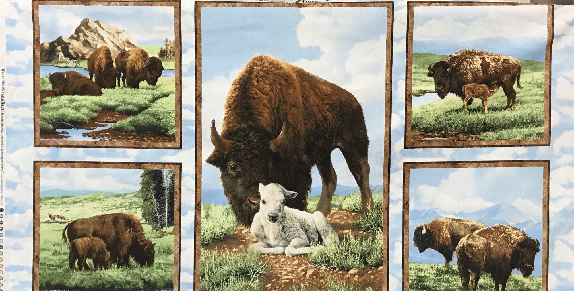 White Buffalo Panel 42 x 43