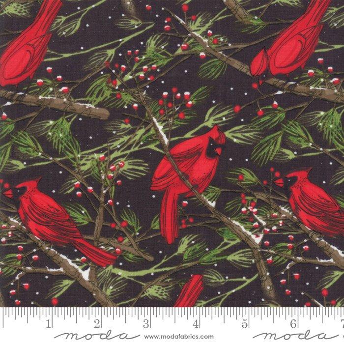 Robin Pickens Splendid Cardinals