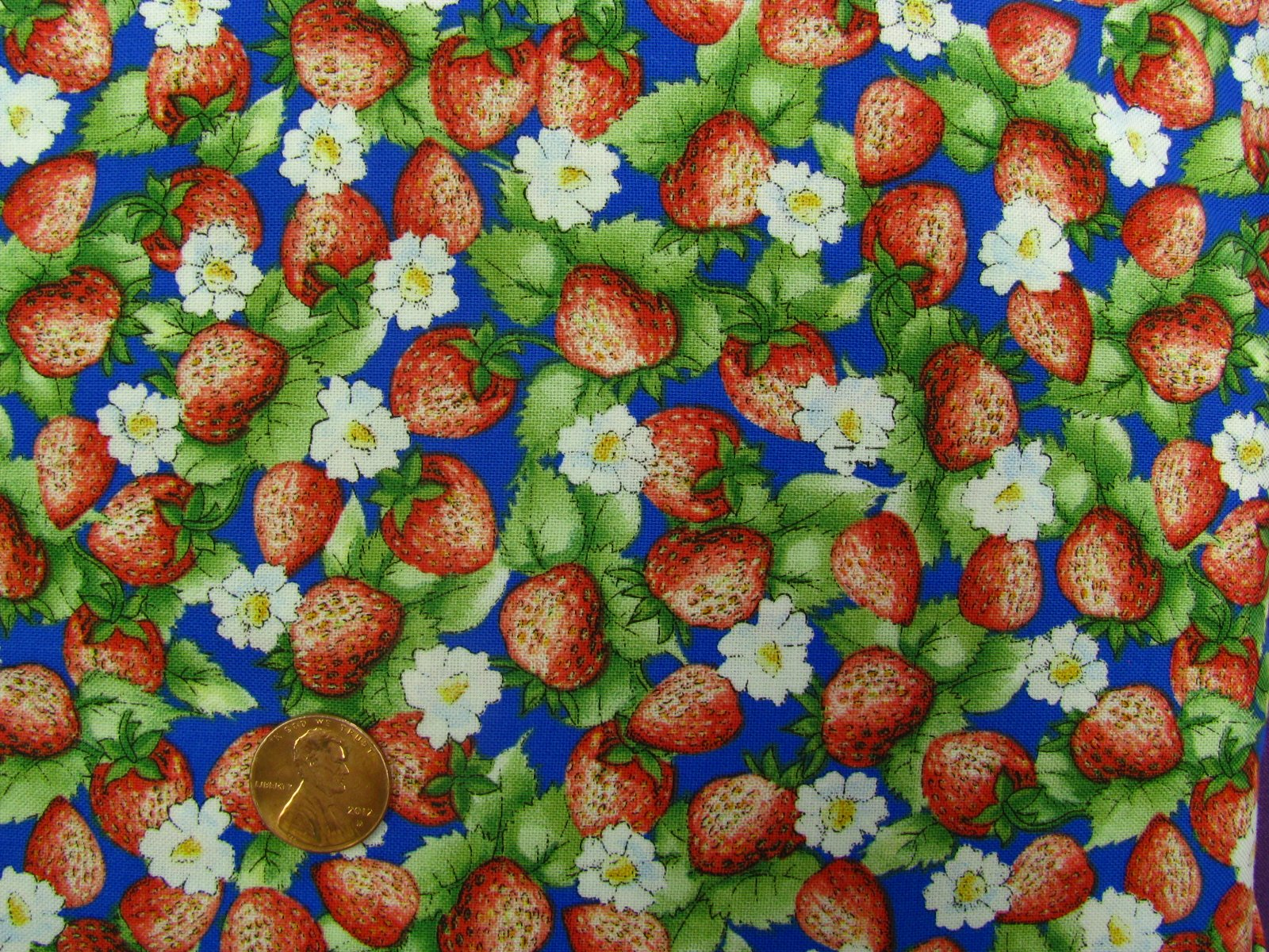 Quilting Treasures-popcorn the bear-blue with strawberries and daisys-20932-B