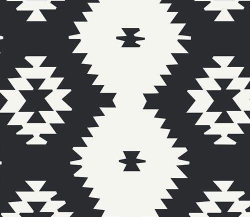 Daring Tribal Noir Canvas