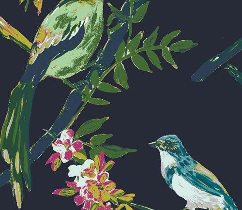Bloomsbury Canvas, Night Talks