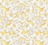 Walking On Sunshine - Daffodil LIght